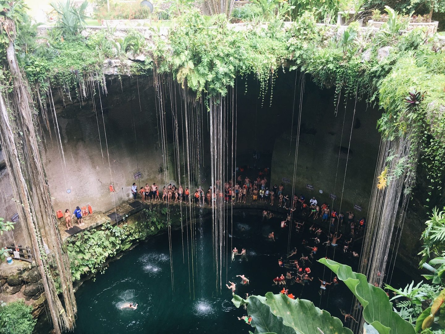 Swimming in a cenote in Mexico!
