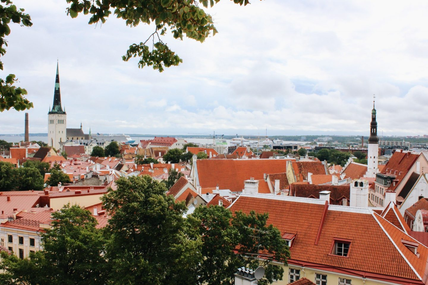 View of the upper Old Town in Tallinn, Estonia!