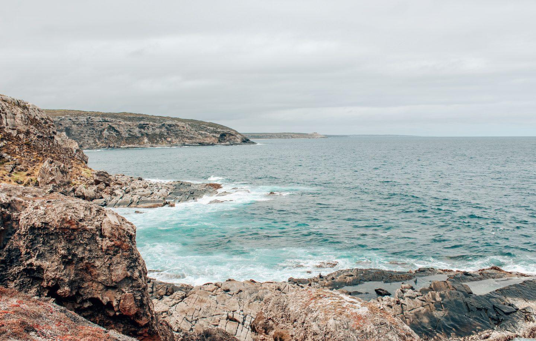 Photo of sleeping seals on rocks on Kangaroo Island in South Australia!