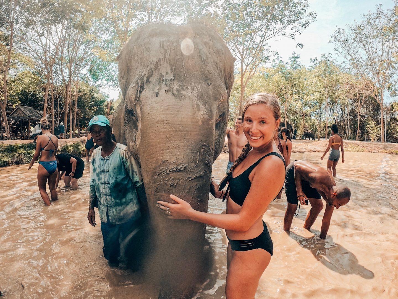 Giving an elephant a mud bath in Phuket, Thailand!