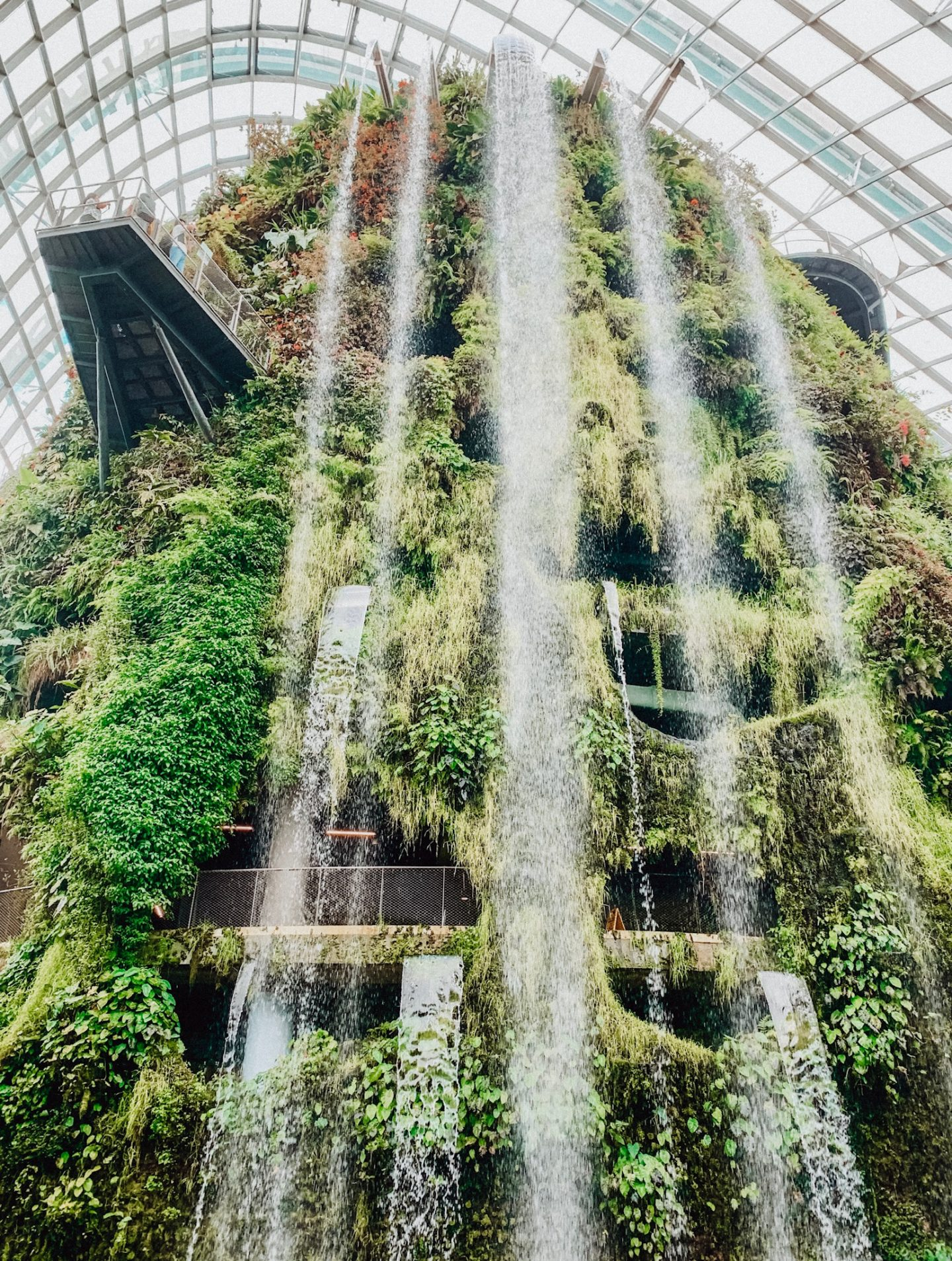 The world's tallest indoor waterfall in the Cloud Forest in Singapore!