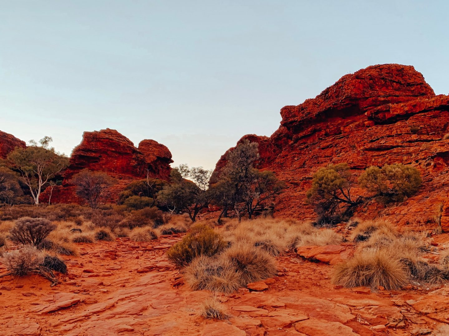 Hiking the Olgas in the Australian Outback.
