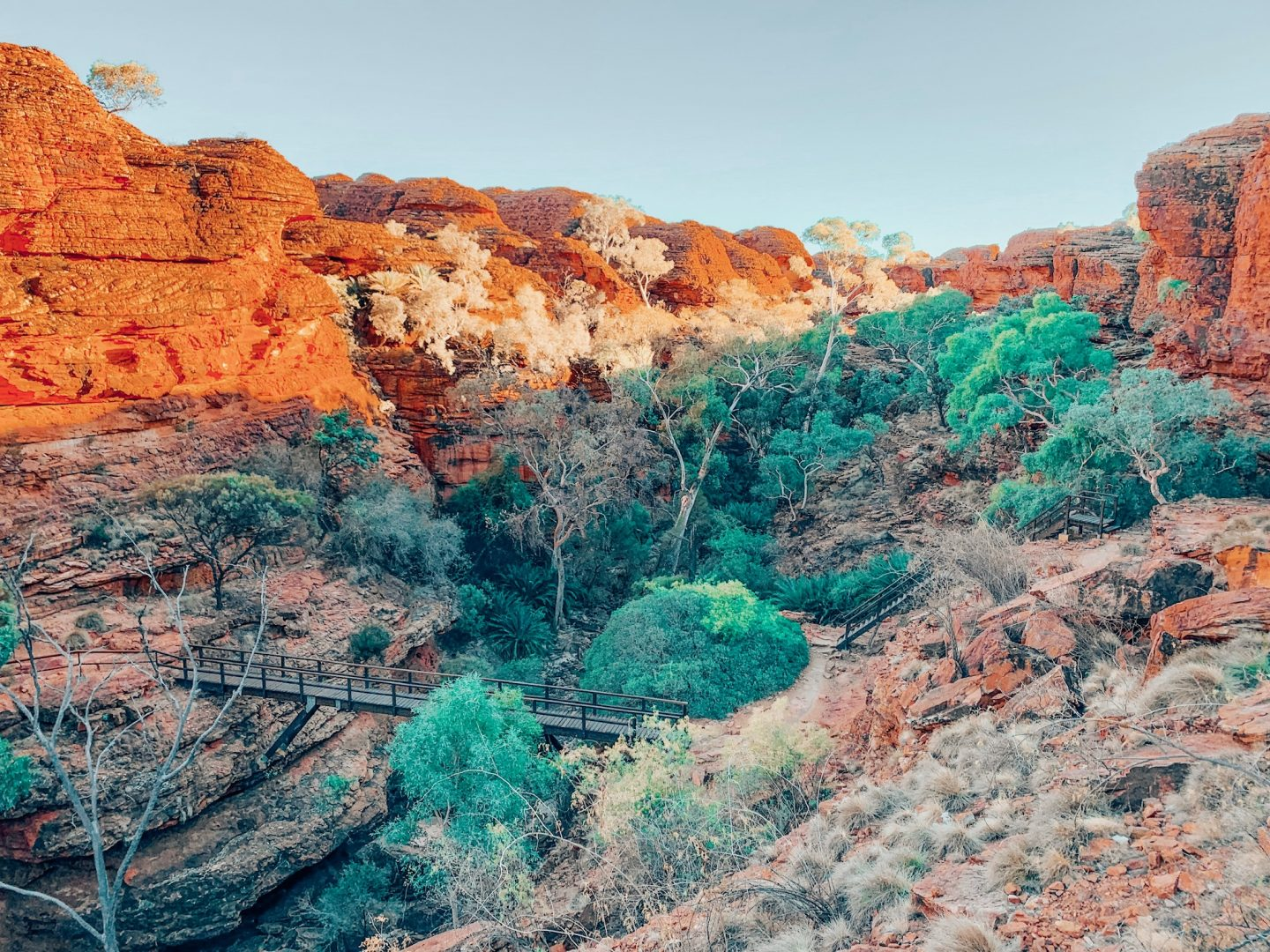 Hiking Kings Canyon in the Outback, Australia!