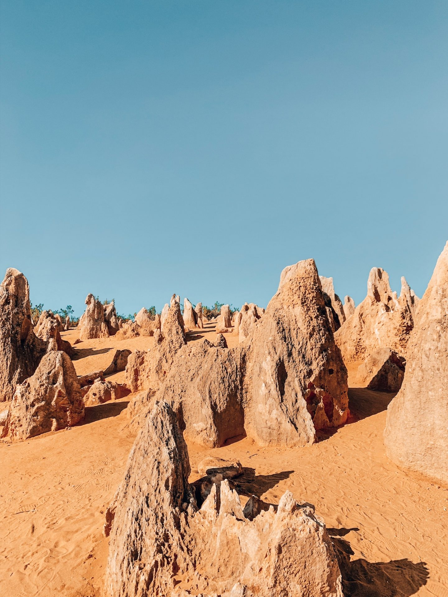 The Pinnacles Desert in Western Australia outside of Perth.