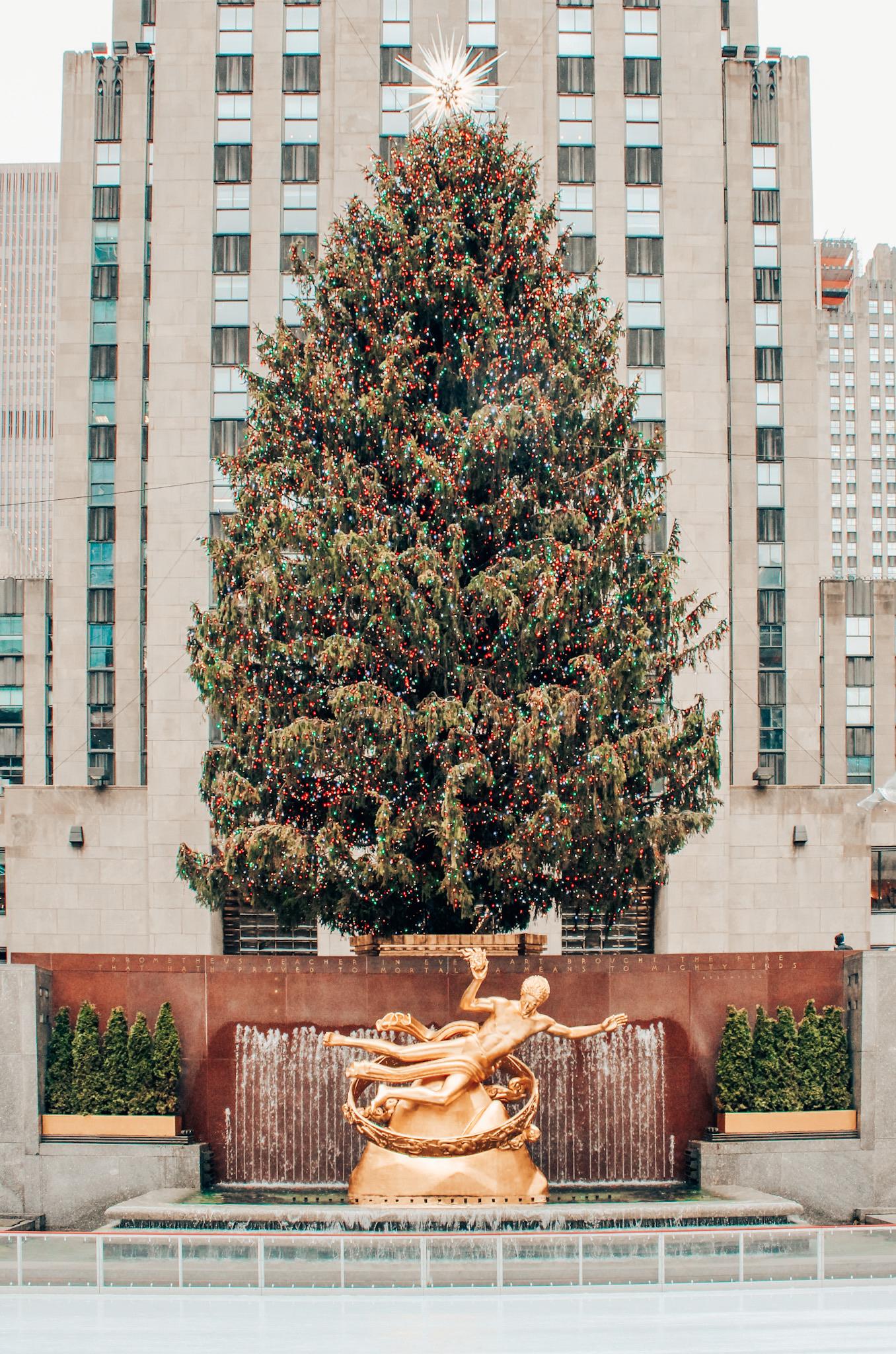 The tree at Rockefeller Center in December!