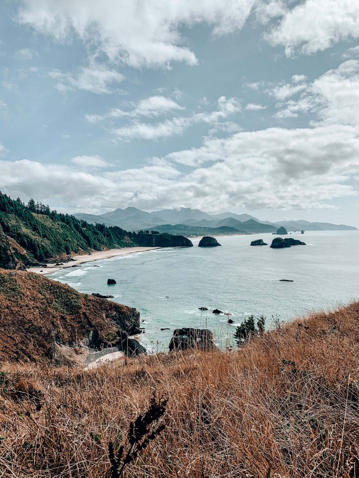 View of Cannon Beach from Ecola Point