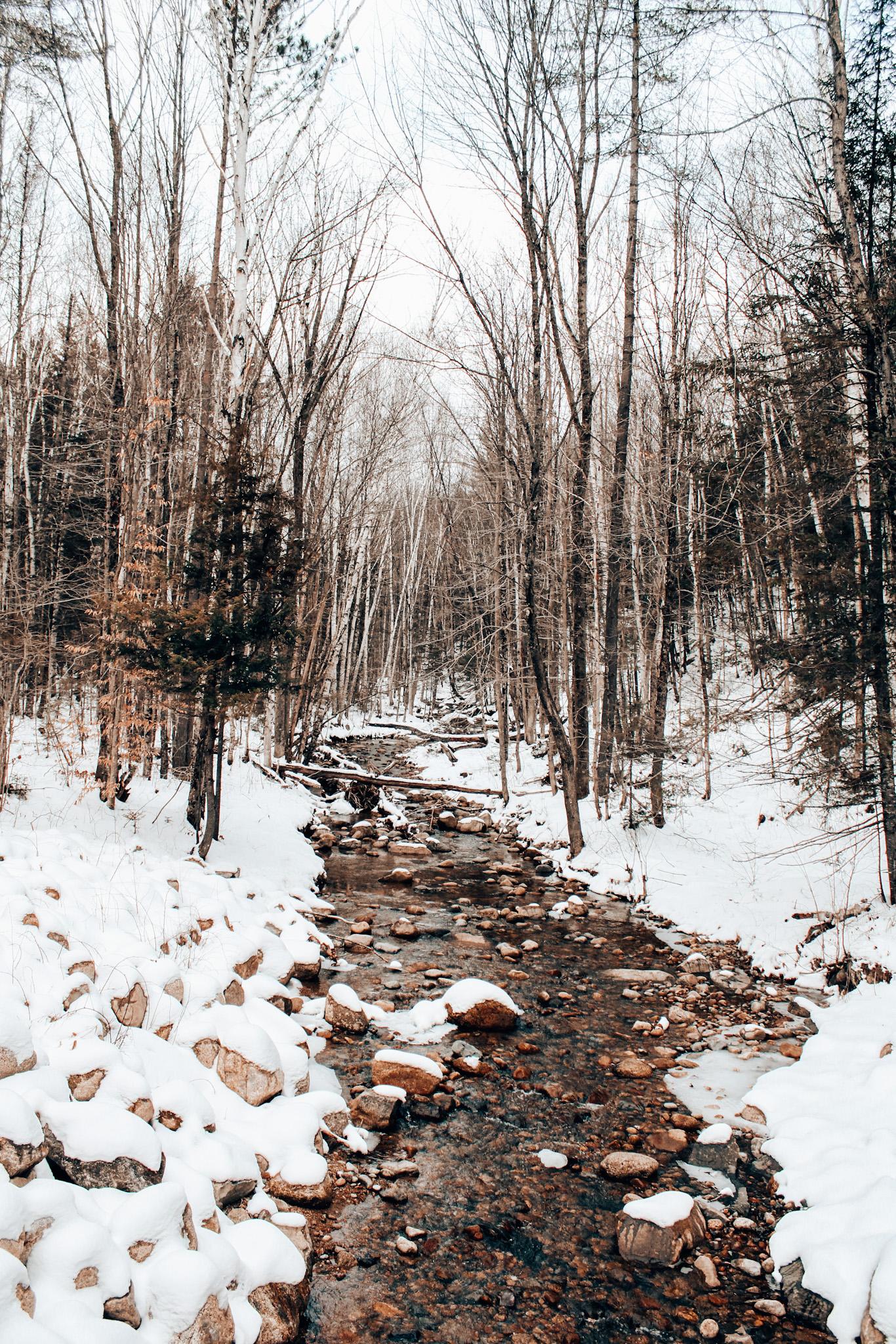 A peaceful winter walk near the Getaway Houses