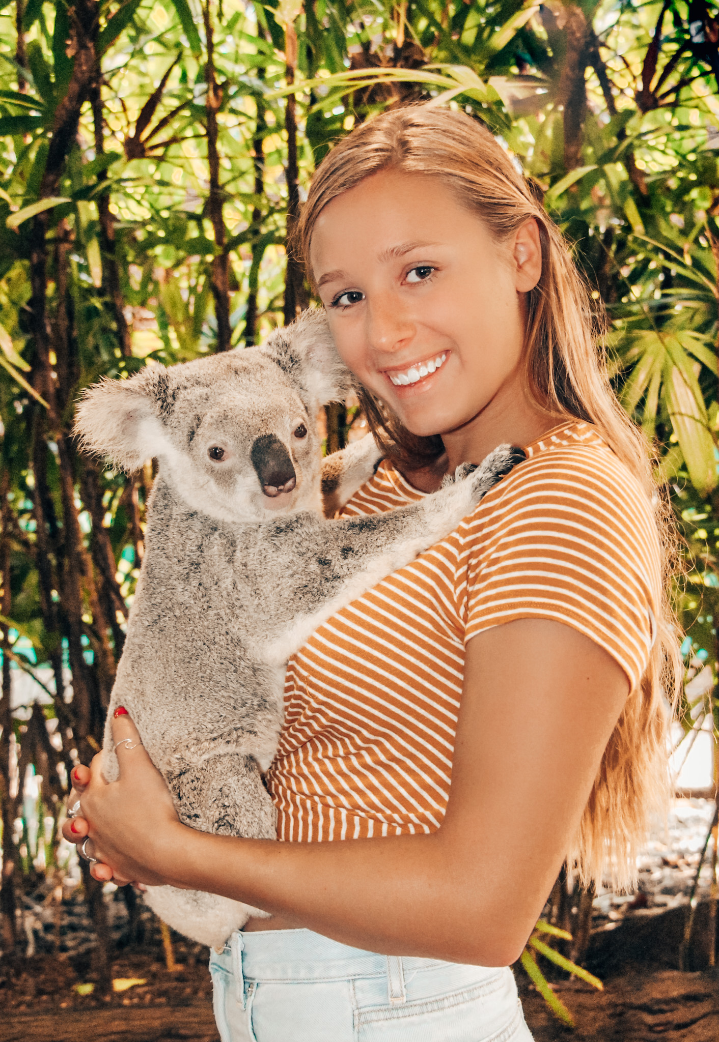 Girl wears a striped shirt and holds a baby koala against her chest while studying abroad in Australia